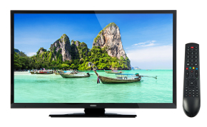 TODAY ONLY! Get this 32 Inch Digihome LED Freeview HD TV delivered to your door for UNDER £140 from Ebuyer