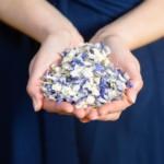 FREE Wedding Petal Sample - Gratisfaction UK