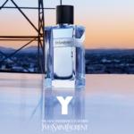 FREE YSL Y Fragrance