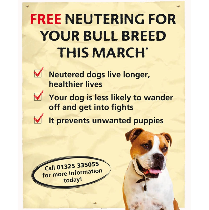 Freebies dog uk
