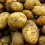 FREE Potato Growing Kit - Gratisfaction UK