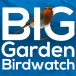 FREE RSPB Big Garden Birdwatch Pack - Gratisfaction UK