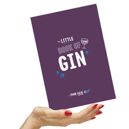 39b634137ac FREE Little Book Of Gin | Gratisfaction UK