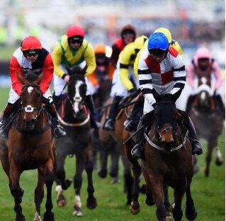 Free Cheltenham Bets